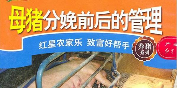 《母猪的产后护理》书籍封面图片