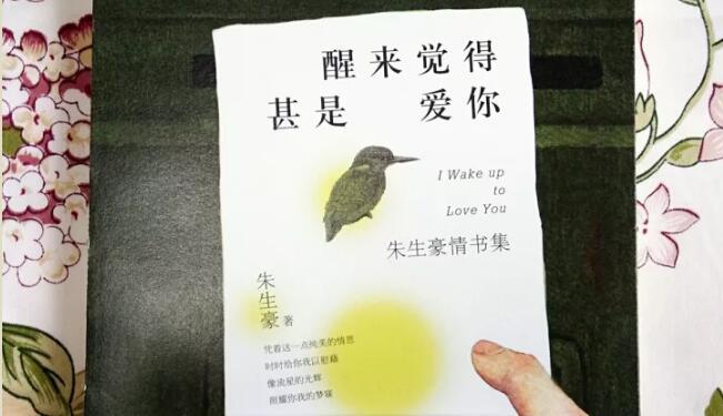 《醒来觉得甚是爱你》书籍封面图片