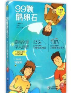 《99颗鹅卵石》书籍封面图片
