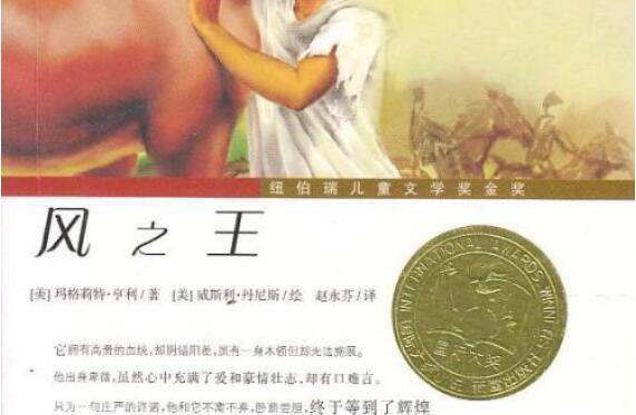 信念与承诺——读《风之王》有感2500字