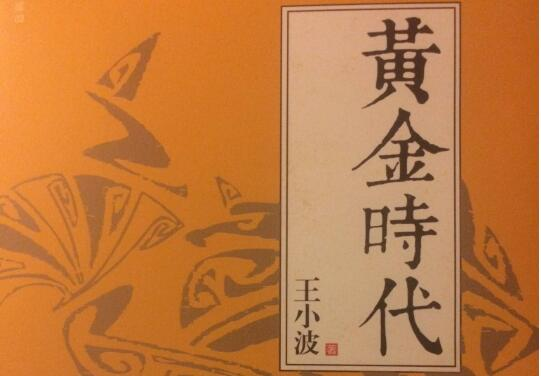 王小波《黄金时代》读书笔记1500字.jpg