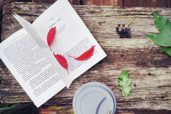 《生命是一场追求的抵达》读书笔记及心得感悟2000字.jpg