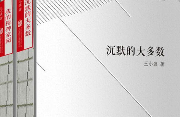 《王小波杂文》读书笔记心得感悟2000字.jpg